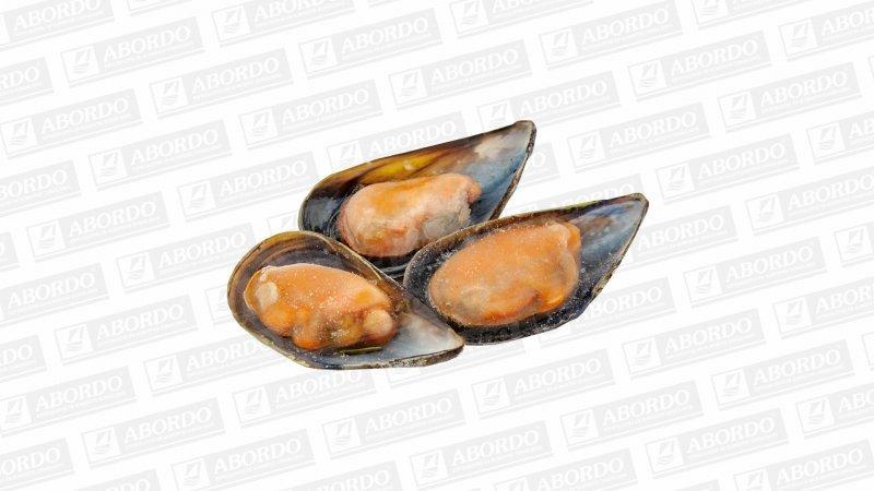 Mejillones Cocidos 1/2 Concha (50/60 pzas./kg)