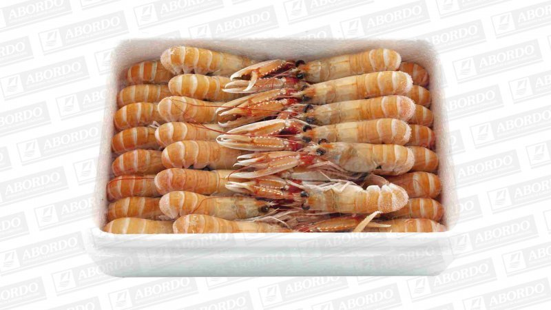 (5) Cigalas Pequeñas (41/50 pzas./kg)